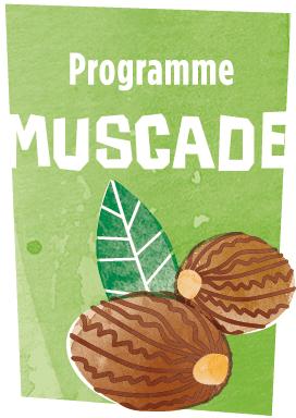 programme_muscade_petit